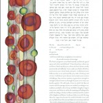 band-of-jewels-2nd-generation-ketubah